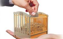 Как узнать размер долга по алиментам